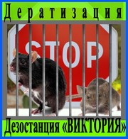Дезостанция  «ВИКТОРИЯ» ,  услуги,  дератизации.